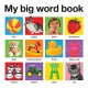 My Big Word Book